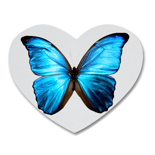 Blue Butterfly Heart Shape Coaster Custom Heart Coasters