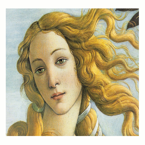 the birth of venus A detailed description of the birth of venus characters and their importance.