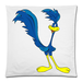 "Road runner Square Pillow Case Custom Pillow Case 18""x18""(two side)"