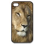 Tender Look of A  LIon Custom iPhone4,4s Case Custom Case for iPhone 4,4S