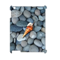 Case for IPad 3G Wifi