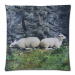 "Custom Zippered Pillow Case 18""x18""(two sides)"