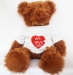 Cute Brown Teddy Bear (Front side)