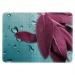 """Custom Folio Case for Google Nexus 10"""""""