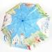 Custom  Foldable Umbrella 01